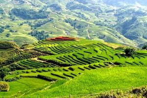 du lịch sapa thăm quan thung lũng mường Hoa